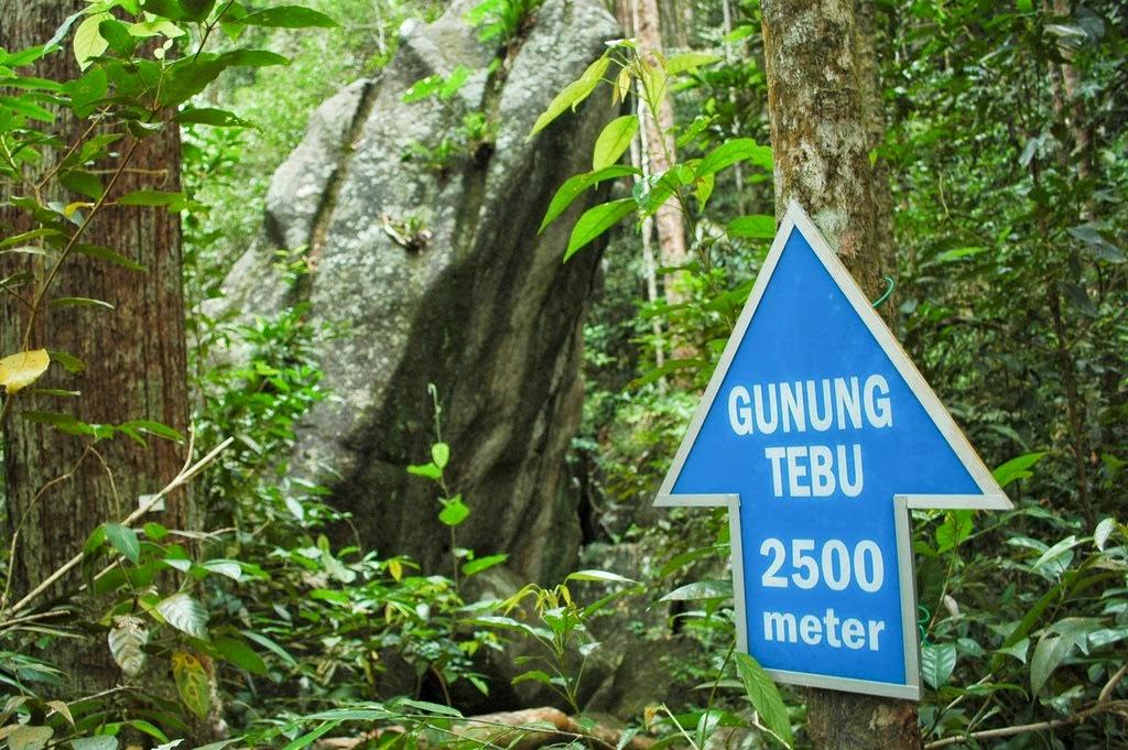 Gunung Tebu, Terengganu