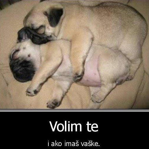 Statusi da se nasmeješ :) Smijesno_19
