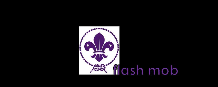Scout Flash Mob