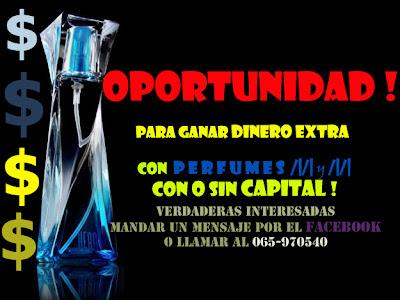 Foto de oferta de empleo en Chiloe