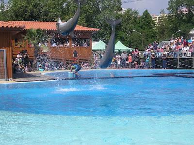 zoo+lisboa Lisboa con niños: 10 lugares para disfrutar