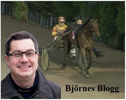 Välkommen till Björnes Blogg