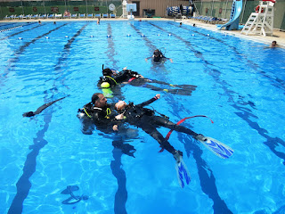 The Six P's and Your PADI IDC