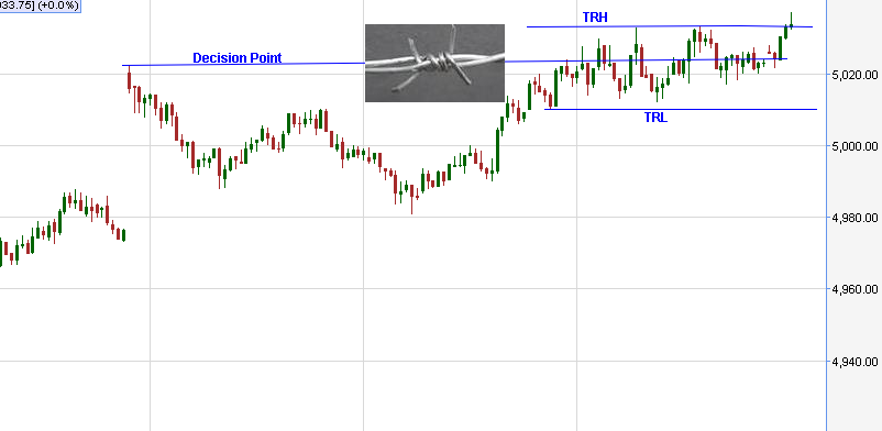 Nifty Nirvana: Barbed Wire