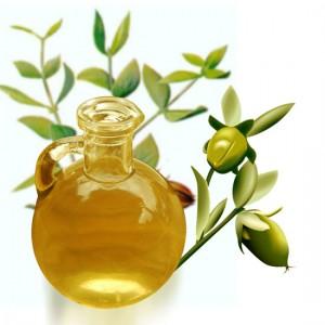 propiedades aceite de jojoba belleza