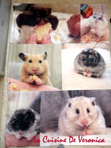 La Cuisine De Veronica 倉鼠 Hamsters