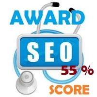 samsury seo score 55%