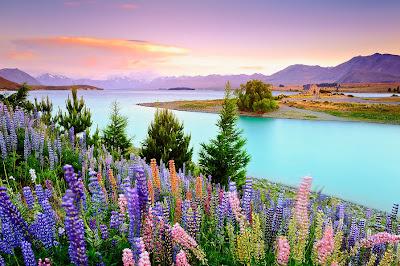 Lago de la paz - Peaceful lake