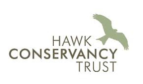 Hawk Conservancy (Andover, England)