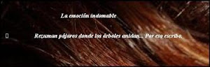 El Blog de Gabriela Amorós