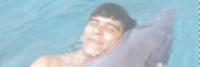 robiyn-dolphin