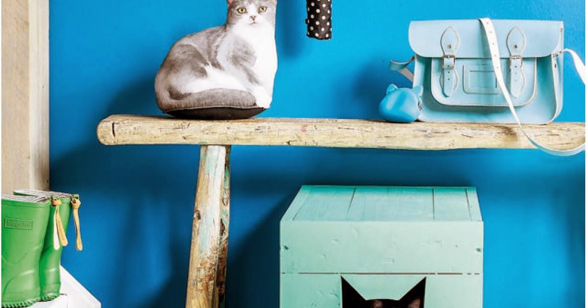 Tu organizas cama de gato - Cama para gato ...