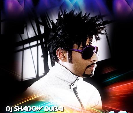 Desilicious 10 - DJ Shadow (2012) DJ Remix Mp3 Song Download