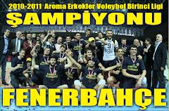 AROMA ERKEKLER VOLEYBOL LİGİ 2010-2011 ŞAMPİYONU