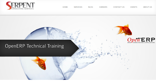 OpenERP Technical Training