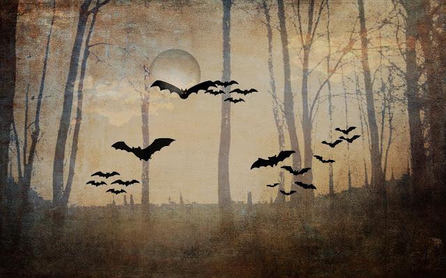 bats woods