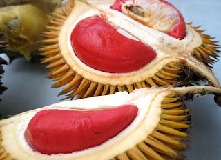 KUMPULAN GAMBAR ANEKA DURIAN UNIK Foto Durian Wallpaper Terbaru