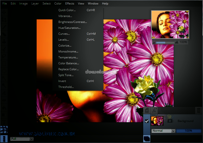 Editor de imagens Pixeluvo para Linux