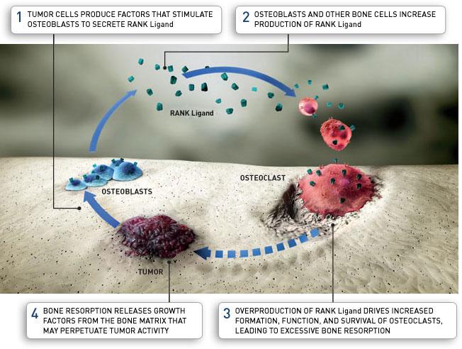 side effects denosumab new drug application
