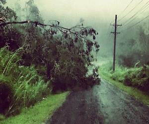 Samao_Cyclone_Evan_damage_photo