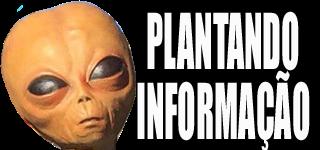 Plantando informação - Notícias, vídeos, humor, música e muito mais