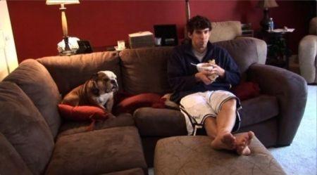 Lucia gangale luglio 2013 - Educare il cane a non salire sul divano ...