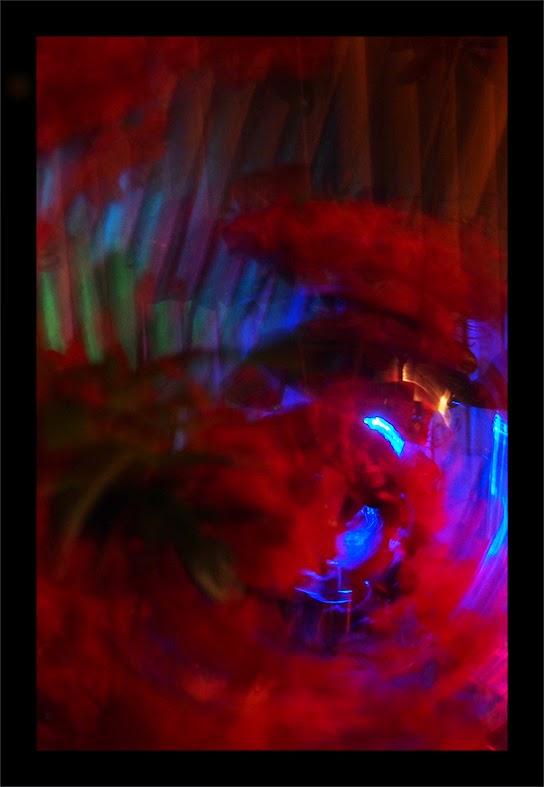 Fleur étrange 3