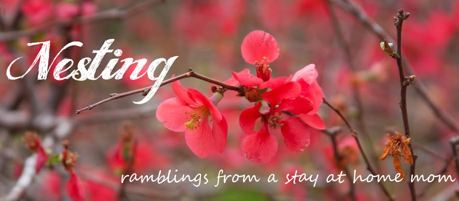 Nesting: Ramblings from a stay at home mom