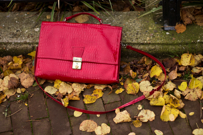 Red thrifted bag and fall / autumn leaves