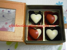SET CHOC 4 CAVITY IN BOOK STYLE BOX