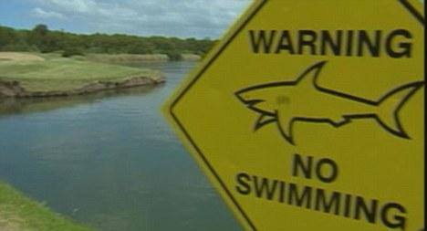 Ikan jerung dalam padang golf akibat banjir