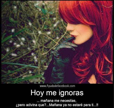 Hoy me Ignoras, Mañana me Necesitas