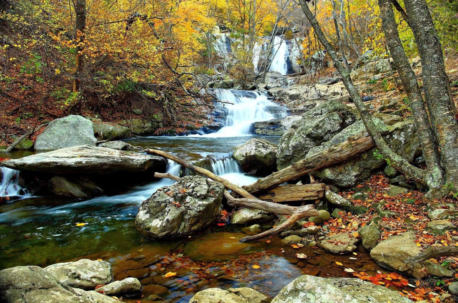 Boulder Creek ~ Colorado
