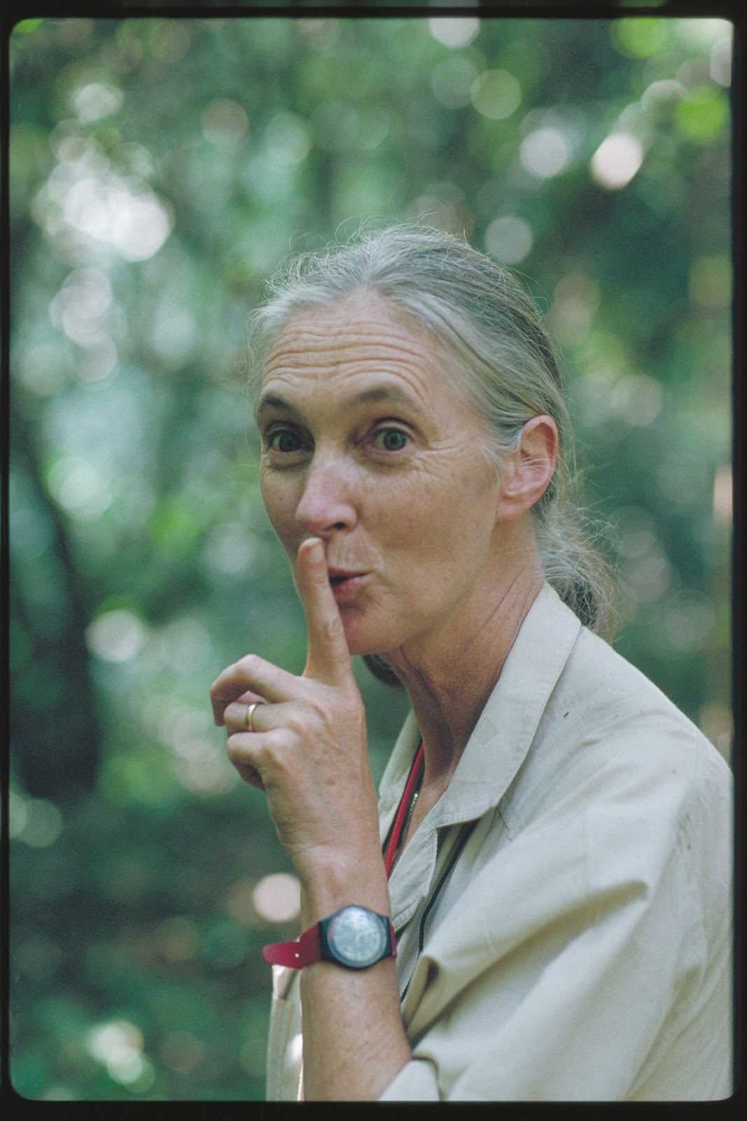 jane goodall At the invitation of a school friend, jane sails to kenya, meets dr louis  travel  back and forth between cambridge and gombe for several years  jane founds  the jane goodall institute's tchimpounga chimpanzee rehabilitation center in  the republic of  what methods did jane use to capture data she collected.