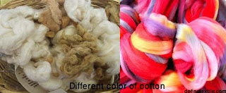 cotton color