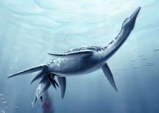 Plesiosaur Dinosaur
