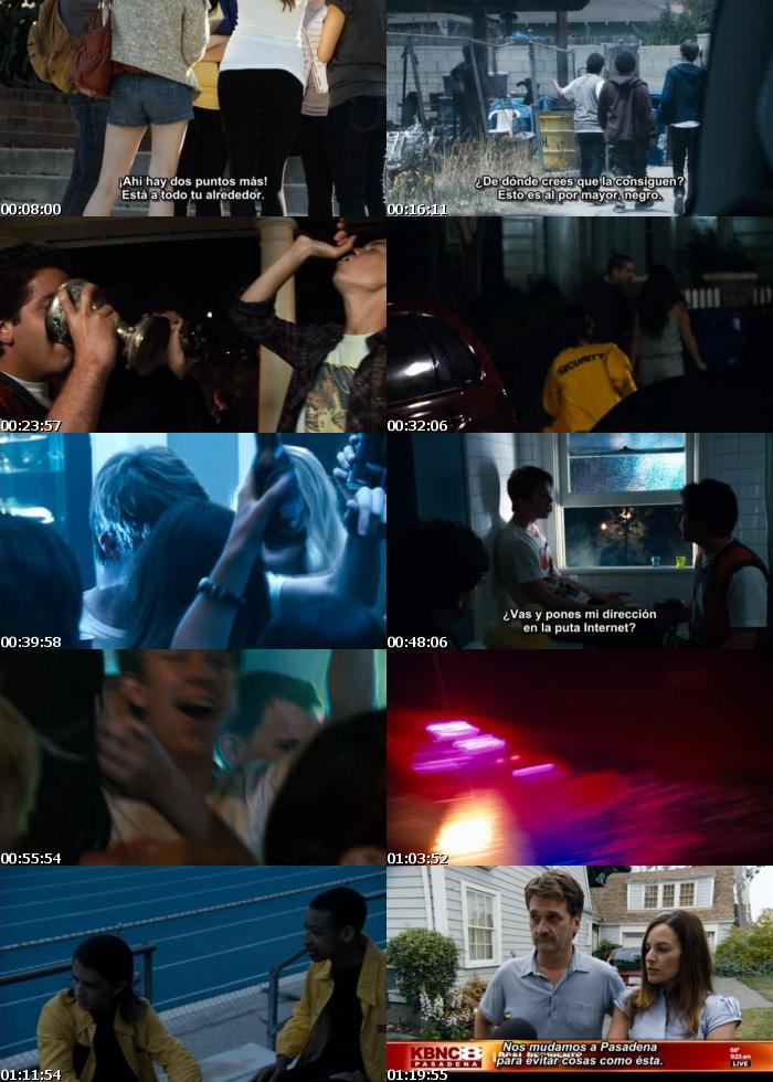 Proyecto X (2012) [DVDRip] [Sub. Español]
