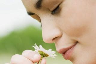 Como cuidar el sentido del olfato