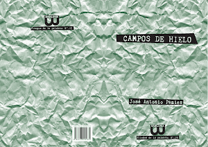Campos de hielo