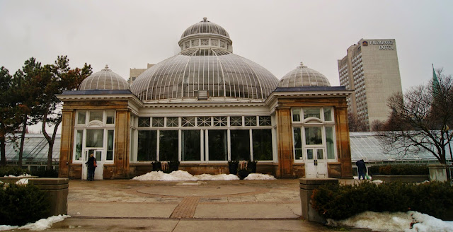 Allan Gardens Conservatory and Park downtown Toronto, flowers, plants, gardens, historical, greenhouse, waterfall, turtle, ponds, trees, native art, Explore, Travel, Tourist Attraction, Christmas, Easter, Spring, Summer, The Purple Scarf, Melanie.Ps, Ontario, Canada, playground, public, free, travel, shows, Award, palm