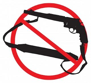 term paper on gun control laws