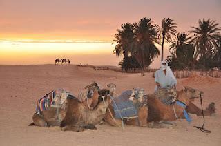 Desierto de Douz - Túnez