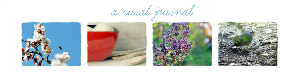 A Rural Journal
