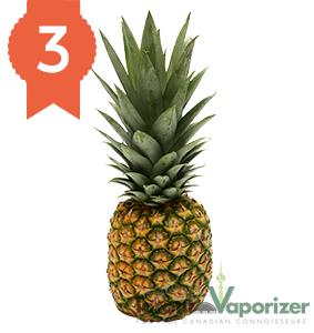 #3 - Pineapple
