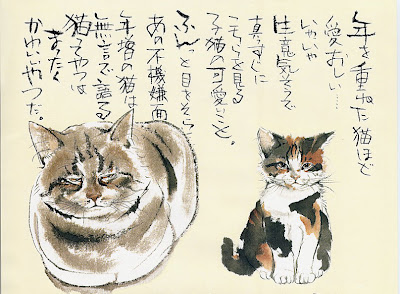 fujikawa-masami-01