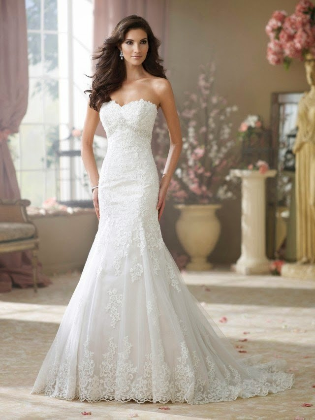 Passion for luxury wedding gowns by david tutera fall 2014 passion for luxury junglespirit Choice Image