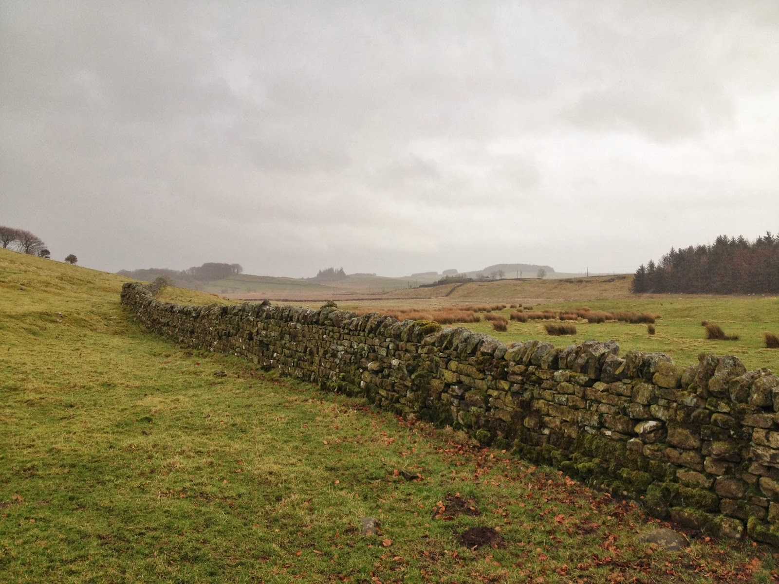 A Visit to Hadrian's Wall