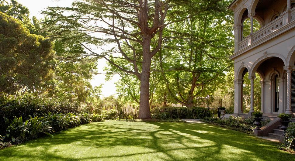 Jack merlo garden design home and courtyard for Courtyard landscaping melbourne