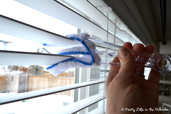 Spring Cleaning Part 1 Windows A Pretty Life In The