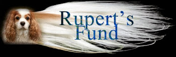 Rupert's Fund